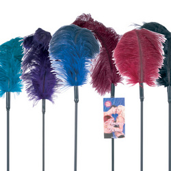 Ostrich Feather Ticklers: Tickle and tease your partner while they masturbate with the best sex toy vibrators, dildos, and vibrating cock rings.
