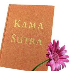 Kama Sutra: Art of Making Love: Learn about different sex positions for couples and why certain sex toys work better than others.